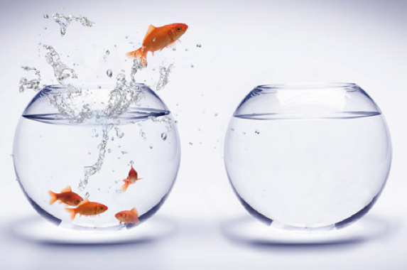 How A Leader Must Challenge the Status Quo - Lolly Daskal